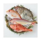 お歳暮 ギフト 送料無料 福岡市場直送 玄海灘鮮魚詰合せ 送料無料 メーカー直送