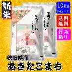 秋田県産 あきたこまち 10kg (5kg×2袋) 新米 29年度 送料無料 送料込み 米 旨み ねばり お取り寄せグルメ お歳暮