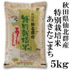 秋田県仙北郡産 特別栽培米あきたこまち 5kg 新米 平成29年 送料無料 送料込み 米 旨み ねばり お取り寄せグルメ お歳暮