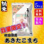 数量限定 秋田県産 あきたこまち 5kg 新米 平成29年 送料無料 送料込み 米 旨み ねばり お取り寄せグルメ
