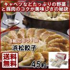 浜松餃子(45粒) 送料込み 19-3007-550 肉料理 おそうざい お取り寄せグル