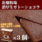 北海道お取り寄せスイーツ 花畑牧場 濃厚ガトーショコラ 3個セット 冷凍ケーキ 送料込み スイーツ 洋菓子 お取り寄せグルメ