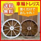 Yahoo!ライフィス住まいスタイル WT-80WHT 車輪トレリス (WT80WHT)