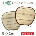 い草クッション い草でお部屋をおしゃれに! トラッド 馬蹄型 紐付き 約43×40cm 台形 天然 自然 涼感 涼しい ひんやり 防カビ ボーダー
