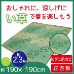 ラグ カーペット マット リビングマット い草 天然素材 おしゃれ 和モダン 190×190cm 正方形 2帖 2畳 水草
