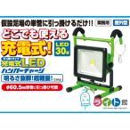 日動工業 充電式LED投光器 LEDハンガーチャージライト BAT-H30W-L1PMSH