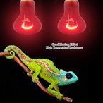 爬虫類照明 両生類用ライト 保温電球 亀 カメ ペット 爬虫類 両生類 加熱 電球 水族館 ランプ UVA/UVB E27 110V(75W