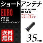 カーボンアンテナ ユーロタイプ ベリーベリーショート 35mm ブラック/黒