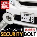 セキュリティ− ナンバーボルト ナンバープレート用 専用工具付き ロック 盗難対策に M6 x 6mm 12mm 16mm 20mm 選択可