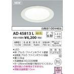 コイズミ照明 LEDダウンライト AD45813L