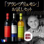 ワインセット 赤 白 アラン ブリュモン お試し3本セット 送料無料の画像