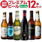 ワンランク上のビールを飲み比べ♪ プレミアム輸入ビール12本セット 16弾 12本セット 6種×各2本 送料無料 瓶 缶 ギフト 詰め合わせ 飲み比べ長S