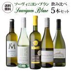 ワインセット 白 5本 飲み比べ 詰め合わせ 送料無料 ぶどう品種で楽しむ ソーヴィニヨン ブラン ワイン5本セット 第8弾