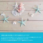 ガーランドミニ ルームデコレーション スターフィシュ 貝殻 シェル ターフィッシュ ハワイアン雑貨