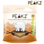 PEAKZ ピークズ ヘルシーチョコスナック クランチーチョコ 塩キャラメル 10袋 10701003 送料無料  代引き不可