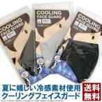 冷感 メッシュマスク 夏用 2枚セット 立体マスク ダスト 花粉 飛沫対策 男女兼用 在庫有り 日本国内発送 送料無料 通販M75