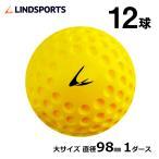 LINDSPORTS ディンプルボール 大 1ダース 12球入
