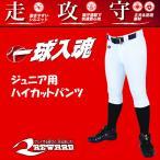 レワード 野球 ジュニア用ユニフォームパンツ 『一球入魂』 ハイカット