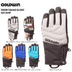 15-16 GOLDWIN (ゴールドウィン) 【グローブ/数量限定】 Snow Squad Glove (スノースカッドグローブ) G81504P