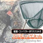 網 釣具 タモ網 魚 釣り 伸縮 折りたたみ式 ランディングネット 釣り網 柄