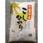 千葉県産 こしひかり 10Kg(5Kg×2袋) 本州四国送料無料