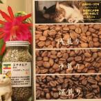 ショッピングお試しセット エチオピア モカイルガチェフェG-2 焙煎度お試しセット(100g×3=300g焙煎前)