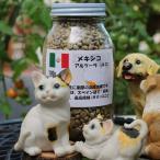 メキシコ アルツーラ 100g(焙煎前)