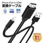 一体型 iPhone HDMI変換ケーブル 充電しながら iPad HDMI USBケーブル AV 変換アダプタ テレビ 接続 ケーブル ビデオデッキ TV出力 カーナビで使用
