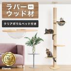 【北米産オーク材を使用した天然素材タワー】つっぱり式 キャットタワー 突っ張り 猫タワー 248cm 猫 キャット ペット クリアボウル