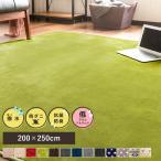 カーペット フランネルカーペット ラグ マット ラグマット 三畳 3畳 200×250 長方形 洗える 絨毯 カーペット ウォッシャブル