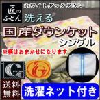 ダウンケット 肌掛け布団   シングル ニューゴールド 東洋紡シノン生地使用 洗濯ネット付き