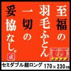 羽毛布団 至福の羽毛ふとん セミダブル スーパーロング エクセルゴールド 2層キルト ツインキルト 日本製