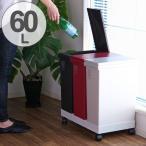 分別 ゴミ箱 60L 横型 3分別ワゴン ふた付き プッシュ ( ごみ箱 ダストボックス おしゃれ )