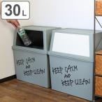 ゴミ箱 分別 積み重ねゴミ箱 ワイド 30リットル ( ごみ箱 ふた付き ダストボックス スタッキング )