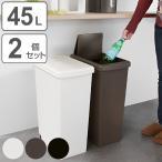 ゴミ箱 2個セット 45L 分別 ふた付き スライドペール 45リットル ごみ箱 ダストボックス 45リトッル ( 屑入れ フタ付き 大容量 )