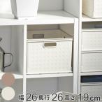 カラーボックス用 収納ボックス RE 高さ19cm( インナーケース インナーボックス 引き出し  )