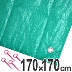 レジャーシート ジャンボシート 行楽シート 2畳 1.7×1.7m グリーン ( レジャーマット ピクニックシート ストッパー付き )