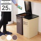 ショッピングダストボックス ゴミ箱 ダストボックス プッシュダスト カフェスタイル 深型 ごみ箱 ふた付き 25L