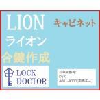 LION(ライオン)キャビネット 合鍵 スペアキー DSK A印