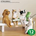ガーデニング オーナメント 置物 かわいい 動物 マスコット ミニチュア SITTING ANIMAL 犬 猫 カエル 蛙 ブタ ハリネズミ