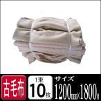 ショッピング古 古毛布 (あて毛布) 1束10枚入り 1枚あたりのサイズ1200×1800前後 (引越し トラック トラック毛布 あて毛布 あてもの 養生 梱包 引越し用 シート)