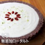 チーズケーキ風 タルト なめらかローチーズタルト ロータルト アイスケーキ アレルギー対応 送料無料