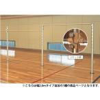鉄棒 体育館用 幅2000mm 低鉄棒 体操 体育 スポーツセンター 教育施設 学校 子供用施設 日本製 S-8598