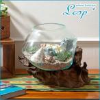 アジアン雑貨おしゃれチークバリガラステラリウム花器花瓶金魚鉢人気インテリア
