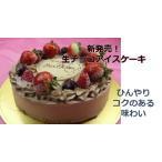 お誕生日 記念日 バレンタイン ホール アイスケーキ ショコラ S