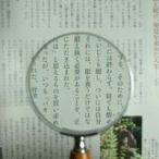 拡大鏡 手持ちルーペ 虫眼鏡 虫めがね 天眼鏡 木柄ルーペ 1431 2.5倍 75mm 池田レンズ ルーペ 拡大鏡