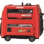 新ダイワ ガソリンエンジン発電機兼用溶接機 [EGW190M-IST] EGW190MIST           販売単位:1 送料無料