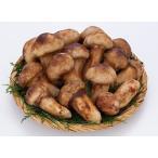 急速冷凍 松茸 国産松茸なら3万円以上 高級松茸ホール  中つぼみ 500g 松茸すき焼き 松茸土瓶蒸し 松茸ご飯