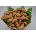 松茸 急速冷凍 中国産 松茸ホール 開き 冷凍松茸 500g  松茸ごはん 松茸茶碗蒸し