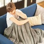ブランケット マイクロファイバー 静電気を防ぐ シングル 毛布 ひざ掛け 肌掛布団 寝具 寒さ対策 ウォッシャブル グルーニー groony